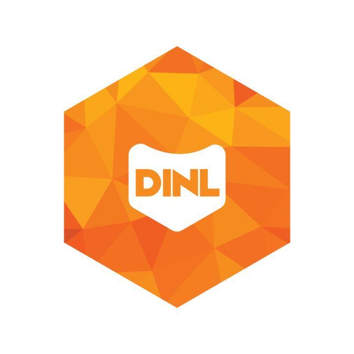 Stichting Digitale Infrastructuur Nederland